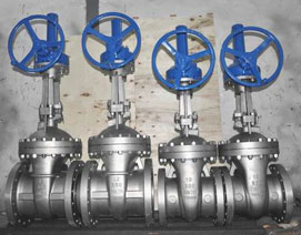 Alloy 20 valves